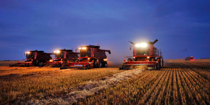 Main Photo:: Image: Combines harvest wheat on farm near Fort MacLeod ::  /